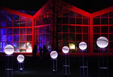 フランクフルトでライトアップショー開幕