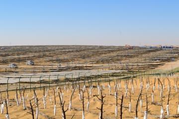 内モンゴル最大の集中型太陽光発電基地、グリッド接続発電開始