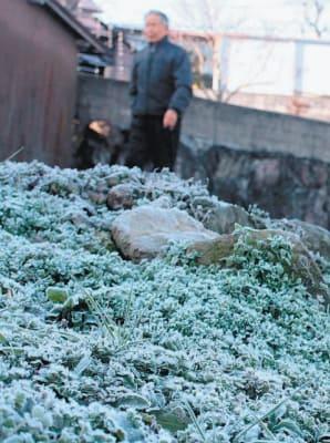 氷点下3・2度まで冷え込んだ玖珠町。霜で白く染まった=19日午前