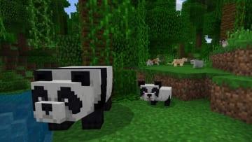 『マインクラフト』で竹ブロック1,000万個置くと保護団体へ寄付!現実のパンダを救うチャリティキャンペーン