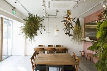 台湾料理レストラン「富錦樹 台菜香檳」=台北(同社提供)
