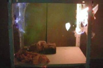 噴射したスプレー缶のガスに引火し爆発した実験動画の一コマ(千葉市消防局提供)