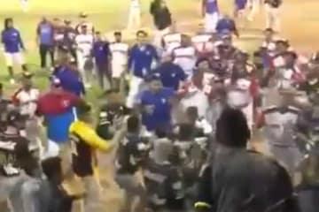 ベネズエラのウインターリーグで大乱闘が勃発(画像はスクリーンショットです)