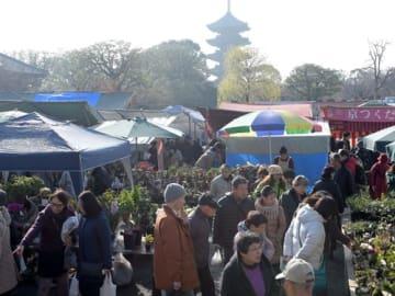 終い弘法で迎春準備の品などを買い求める人たち(21日午前10時、京都市南区・東寺)
