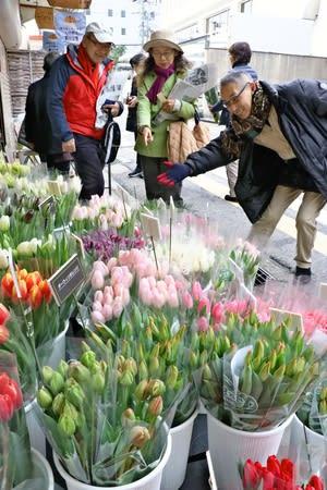 さまざまなチューリップを並べた花屋=23日、新潟市中央区