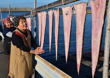 漁港近くで天日干しされたナマダ=25日、館山市