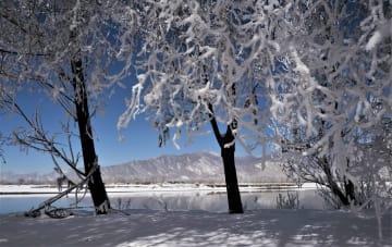 ヤルンツァンポ川流域に霧氷が出現 チベット自治区