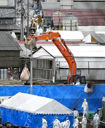 殺処分が続く養豚場で進められた埋却作業=26日午後4時32分、関市内