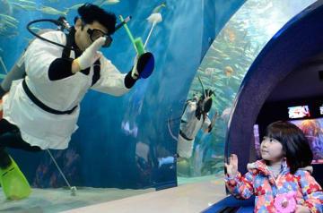 トンネル水槽を磨くかっぽう着姿のダイバーとあいさつを交わす子ども=27日、青森市の浅虫水族館