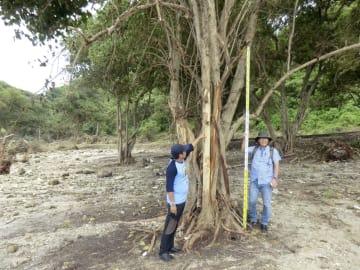 インドネシア・ジャワ島バンテン州の津波被災地を調査する東北大災害科学国際研究所の今村文彦教授(右)=28日(同国海洋・水産省提供、共同)