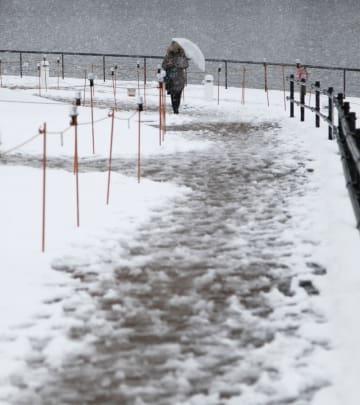 雪が降る富山市内の公園を歩く人=29日午後