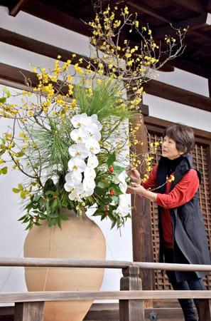 花のバランスを整える外賀さん(宇治市宇治・宇治上神社)
