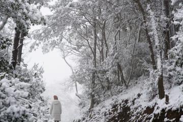 浙江省で降雪 銀世界広がる