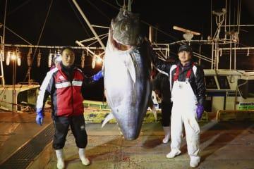 豊洲市場の初競りで3億3360万円の最高値を付けたクロマグロを釣った藤枝亮一さん(左)=4日早朝、青森県大間町(藤枝さん提供)