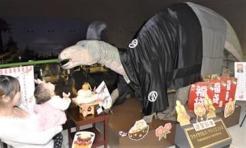 羽織袴姿で来場者を出迎えるフクイサウルスの実物大模型=1月5日、福井県勝山市の県立恐竜博物館