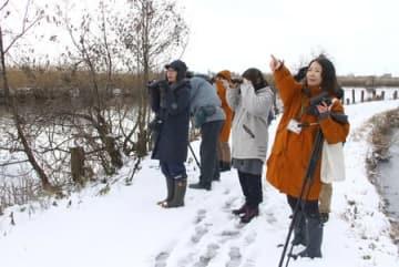 福島潟のほとりで冬の野鳥を探すバードウオッチングの参加者ら=6日、新潟市北区