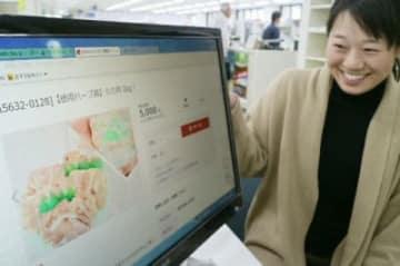 ふるさと納税の手続きができるサイト画面=竹田市役所