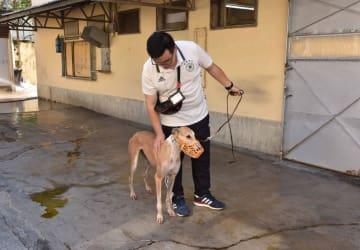 ドッグレース場に遺棄されたレース犬の健康状況を確認する市政署(当時名称:民政総署)の職員(資料)=2018年7月(写真:IAM)