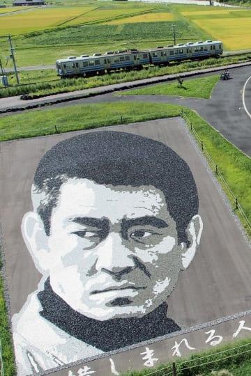 弘南鉄道(青森県)の田んぼアート駅近くにあった、小石を敷き詰めて健さんの顔を描いた作品(2016年9月撮影、現在はない)