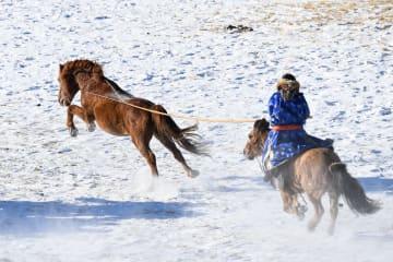 騎馬民族の妙技、雪原で披露 内モンゴル自治区