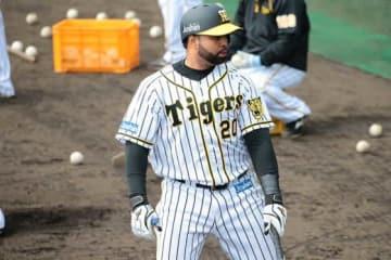 昨季限りで阪神から退団となったウイリン・ロサリオ【写真:荒川祐史】