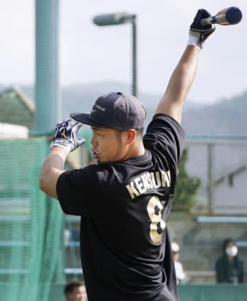 打撃練習する日本ハムの近藤=鹿児島県天城町