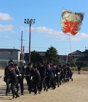 手作りした大凧を協力して揚げる新成人たち(東近江市・聖徳中)