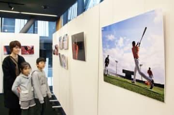 新潟アルビレックスBCの選手たちを撮影した武山智史さんの写真展=13日、長岡市