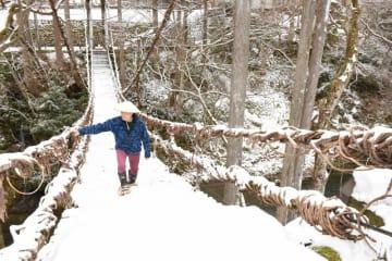 雪が積もったかずら橋。かんじきで白銀の世界を散歩できる=1月10日、福井県池田町土合皿尾