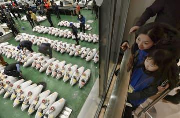 専用デッキからマグロの競りを見学する親子=15日午前、東京都江東区の豊洲市場