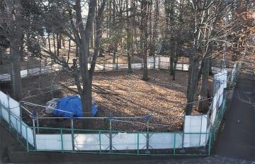 駐車場が整備される予定の冒険の森の一部=14日
