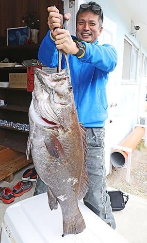 【オオスジハタと判明した魚(昨年12月、和歌山県白浜町で)】