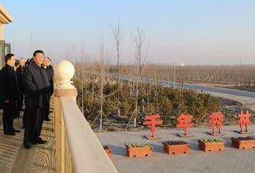 習近平氏「雄安はエコ環境で価値を示し、魅力を高めるべきだ」