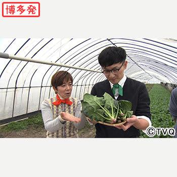 【今週の「ごちそうマエストロ」】福岡・朝倉へ。旬な葉物野菜を使った「クイックレシピ」を披露!