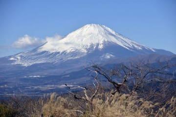 くっきりとした姿を見せる富士山=18日、山北町・大野山山頂