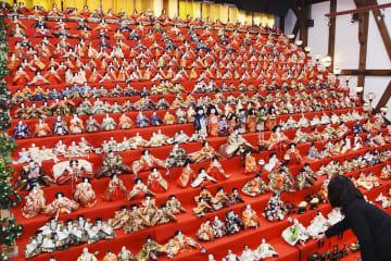市民らから寄せられた人形がずらりと並ぶひな祭り展=1月18日、福井県大野市元町の平成大野屋平蔵