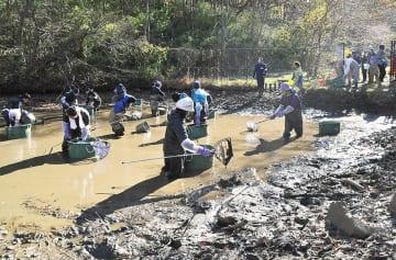 水質調査や生物の保護を行う専門家とボランティア