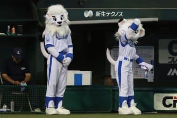 西武のマスコット・レオ(左)とライナ【写真:荒川祐史】