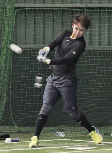 打撃練習するロッテ・平沢=ロッテ浦和球場