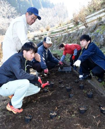 「山之口あじさい公園」でアジサイの植栽作業に取り組む南九州大の学生と山之口地区まちづくり協議会のメンバーら