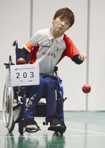 チームの韓国戦でボールを投げる杉村英孝=東京都新宿区