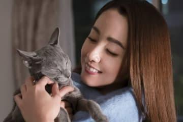 (C)2018「猫は抱くもの」制作委員会