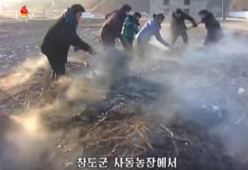 北朝鮮「人糞集め」の現場は「ランチ出前」ビジネスの最前線