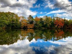 「さんだの秋」の特選作品。学園西公園の池に写った空=学園5(三田市提供)