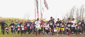 春を告げる、こいのぼりマラソンの参加者を募集している=昨年の開催より