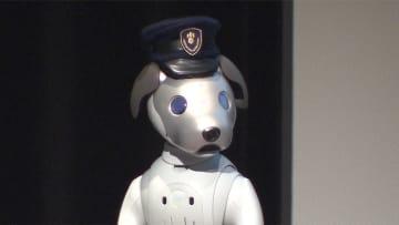 ソニー aiboに「パトロール機能」追加 セコムと連携も