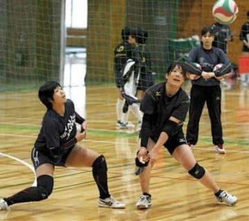 チームの再出発となる「全国6人制リーグ総合男女優勝大会」の初戦に向けて練習に励むフォレストリーブズ熊本=嘉島町民体育館