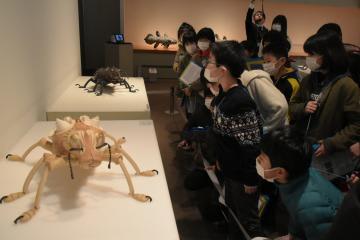 昆虫をモチーフにした陶芸作品を熱心に鑑賞する児童たち=笠間市笠間