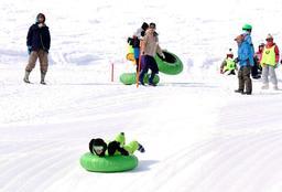 タイヤチューブ型のそりでゲレンデを滑降する参加者ら=氷ノ山国際スキー場