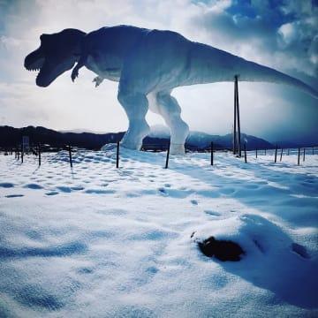 冬の福井県勝山市に出現した「ホワイトザウルス」